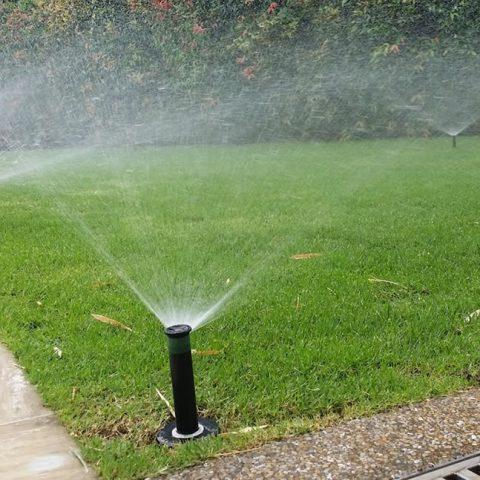 Irrigation Benoni